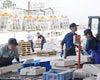 北海道函館より  漁師の皆さん、目利きの達人サンフーズ小林社長