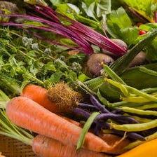 地球の恵みを味わう農園メニュー