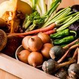 厳選した季節の野菜