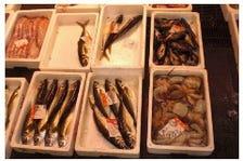 朝捕れ日本海の天然鮮魚を直送