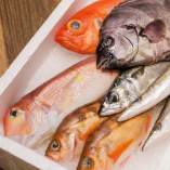 四季を楽しむ海の幸は素材を活かしたシンプルな味付けでどうぞ。