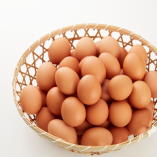 福島県会津地鶏の卵【徳島県】