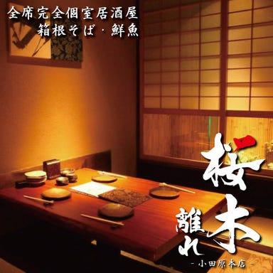 個室居酒屋 箱根そば・鮮魚 桜木 離れ 小田原本店  メニューの画像