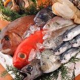 全国から届く新鮮な鮮魚【日本】