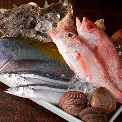 産直地魚と農園野菜 煉
