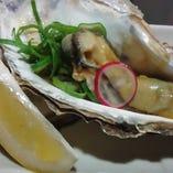 鮮度◎殻付活岩牡蠣 時期によってご提供が出来ない場合も御座います。