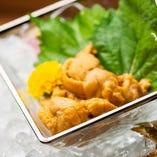 生雲丹の刺身【新鮮食材】