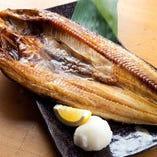 【別格の旨さ!】北海道産ホッケ 脂のりバッチリの特大サイズ!!