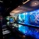 幅5メートル大型水槽に海水魚と淡水魚が優雅に泳いでおります