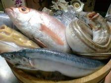 舞鶴からの直送鮮魚は一味違います!