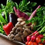 旬の味覚をテーブルに♪契約農家様から毎朝仕入れる元気な野菜達