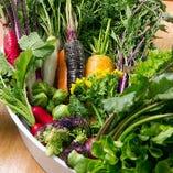 生産者が丹精込めて作った彩り豊かな有機栽培野菜を使用