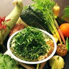 オーガニック野菜食べ放題の火鍋