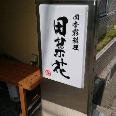四季彩料理 田菜花