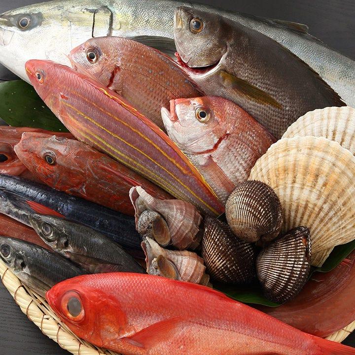 市場直送!!地魚や三崎の本マグロも♪