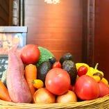 様々な品種、産地の旬野菜が楽しめます☆