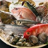 築地直送!!朝獲れ鮮魚をブツ切り食感愉しめる刺身盛合わせ