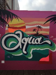 cafe restaurant aqua south coast