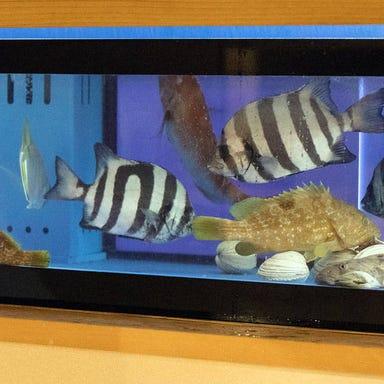 魚で乾杯 うず潮  メニューの画像
