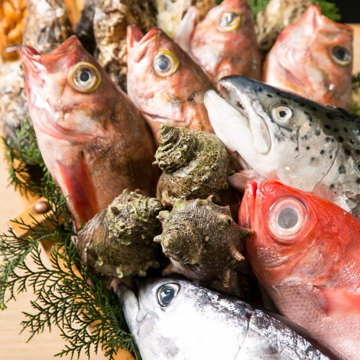 全国の漁場より毎日入荷! 目利きが選んだ自慢の旬鮮魚
