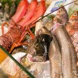 全国の漁場から海の恵みを集めた食材は鮮度が命!自慢の大型水槽や陳列ケースに豪快に並べられる鮮魚