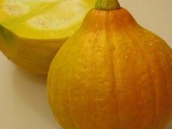 季節の狭間に出てくる珍しい食材も美味しくクローズアップ。