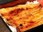 浜名湖のしんこ鰻 (仕出し可)