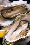 甘みが強く、身の弾力性が抜群の厚岸産の牡蠣をご用意。