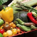 新鮮な野菜を豊富に取り入れた料理の数々。