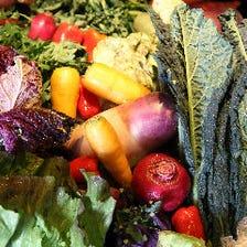 季節を感じる新鮮野菜が自慢