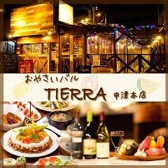 おやさいバル TIERRA 中津本店