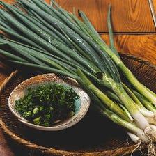 新鮮『地野菜』