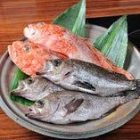 旬の鮮魚を使用した料理長の煮付けはご飯がほしくなるくらい絶品