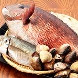 銚子をはじめ、全国各地より厳選された鮮魚が毎朝届きます。