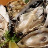 一皿で3種類の牡蠣を食べ比べ、味の違いをじっくりと感じることができる『厳選牡蠣3種食べ比べ』