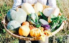 「有機栽培のお野菜」