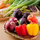 スタッフ自ら産地へ出向き仕入れる、季節限定食材にもご注目!