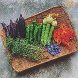 大隅や自家菜園の新鮮野菜を使用