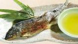季節の川魚焼き(イワナ・ヤマメ・アユなど)