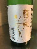 東洋美人限定純米吟醸 千本錦