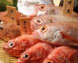 毎日違うお魚が届きます お好みの調理方で召し上がれ