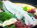▲泳ぎイカは透き通る透明感と甘いコク、新鮮な歯ごたえ