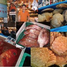築地直送の新鮮な魚介類