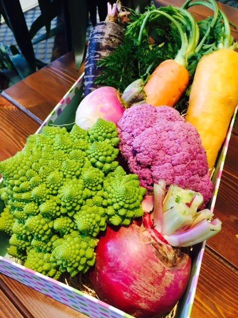 野菜ソムリエが厳選!地元で採れた野菜を使ったチーズフォンデュ