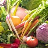 地産地消にこだわり横須賀野菜を使用