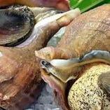 つぶ貝にんにく炒め
