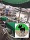 テラス4席 小型犬同伴OK Dog専用メニューあります。