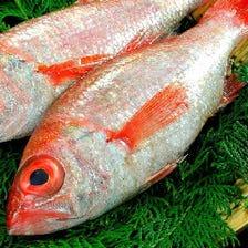 高知宿毛、岩手大船渡からの直送鮮魚