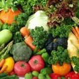 <自社農場直送の新鮮な野菜>契約農家のヘルシーな野菜!健康第一