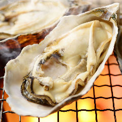 牡蠣 (生・焼)